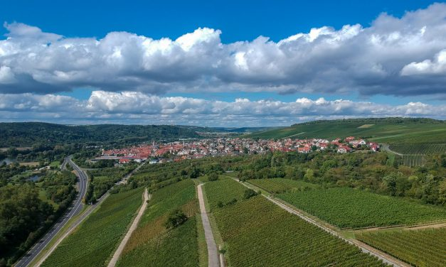 Sommer in Eibelstadt