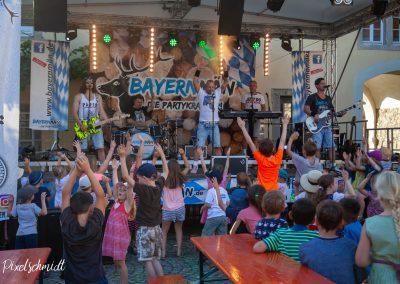 2019-ffw-weinfest-bayernmän-6411