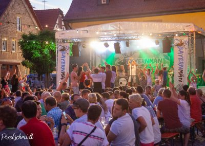2019-ffw-weinfest-bayernmän-6558